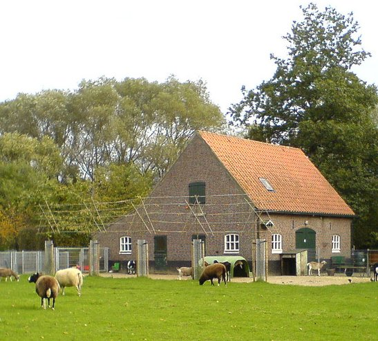 Properties in Haagse Hout  Netherlands
