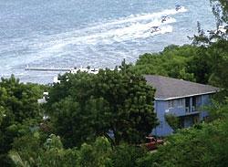 Properties in Saint Peter Antigua and Barbuda