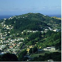Properties in Mount Albert Auckland