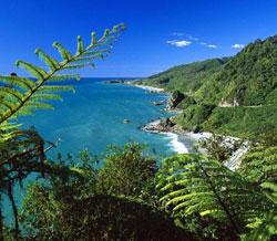 Properties in West Coast New Zealand