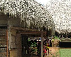 Properties in Embrera Panama