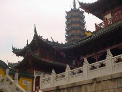 Properties in  Jinshan Shanghai