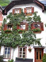 Austria houses