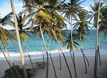 Barbados beachfront luxury homes