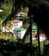 Dominica Hillside properties