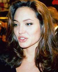 Brad Pitt, Angelina Jolie consider buying property in Croatia